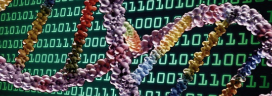 AI Meet Genealogy And Stirs Up Massive Controversy